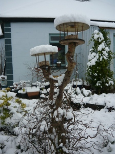 Bird table in snow.