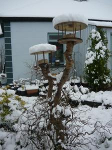 Bird table in snow.