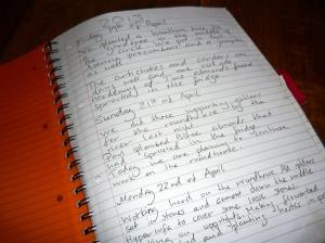 staying organized diary