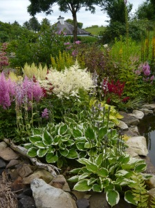 summer boggarden