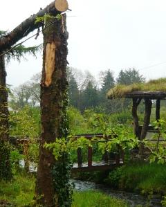 woodland 049