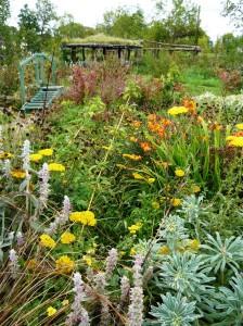 wildlife september flowers