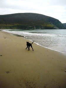 Achill island run