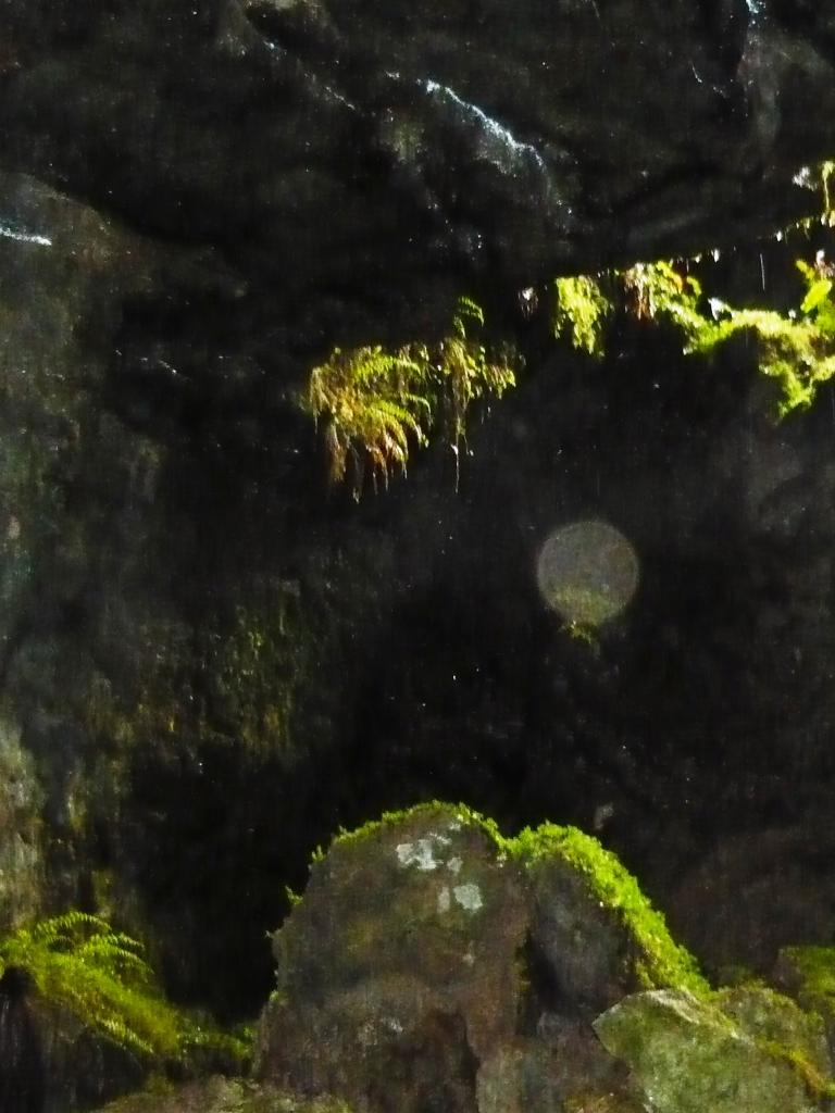 solstice 062