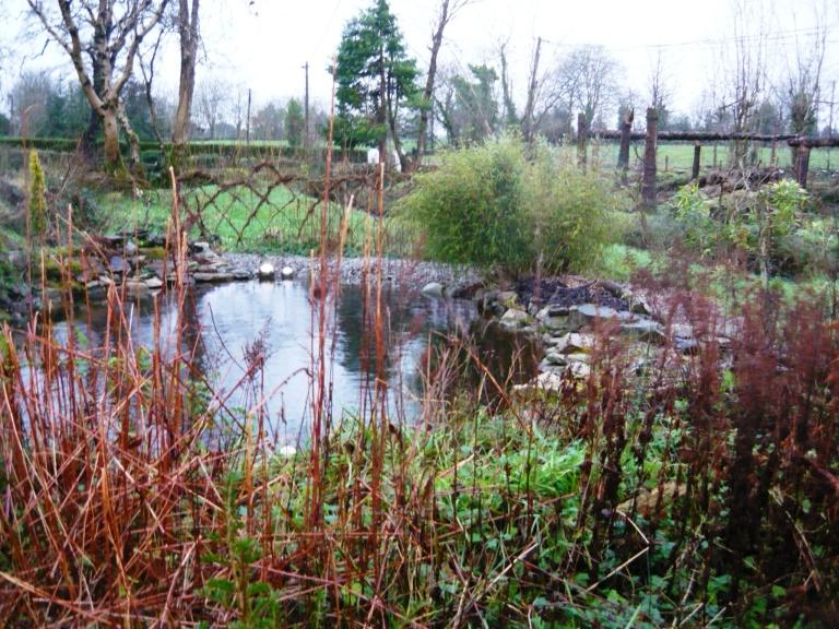 dec garden 035