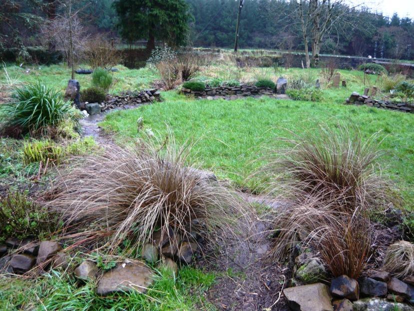 Gardening in January.