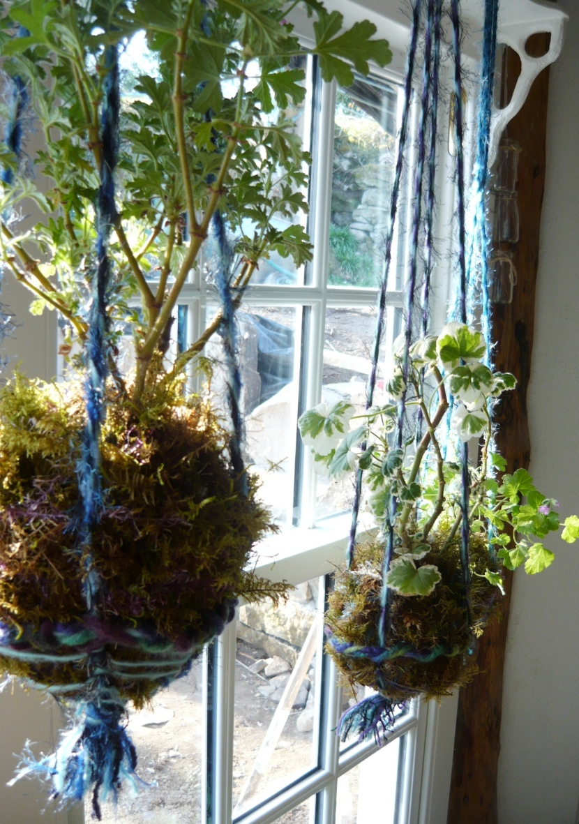 Kokedama moss balls with a twist.