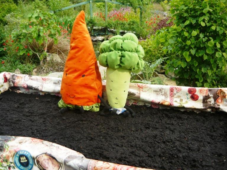 carrots 045