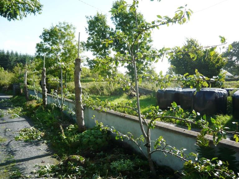 september-garden-061