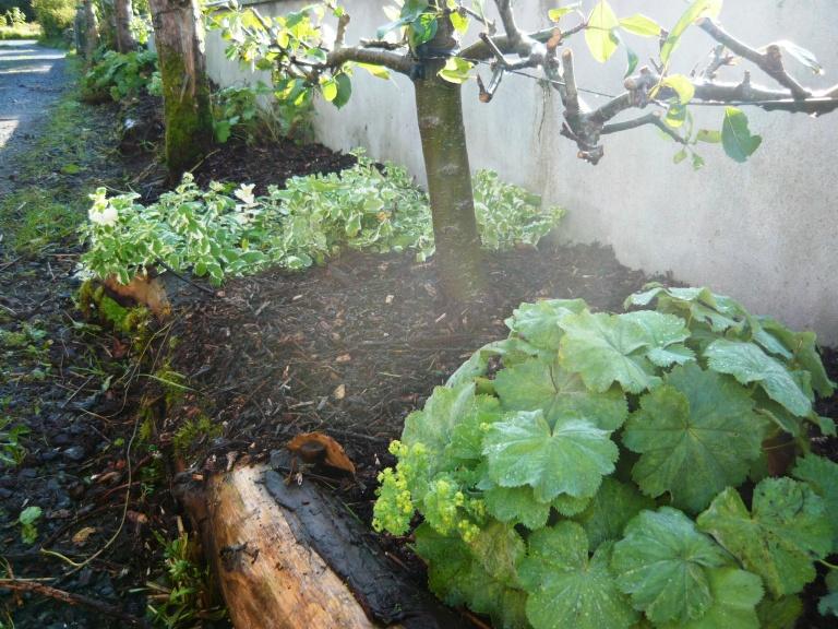 september-garden-088