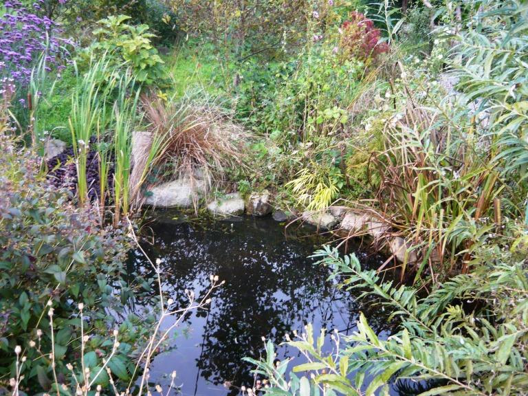 september garden 138