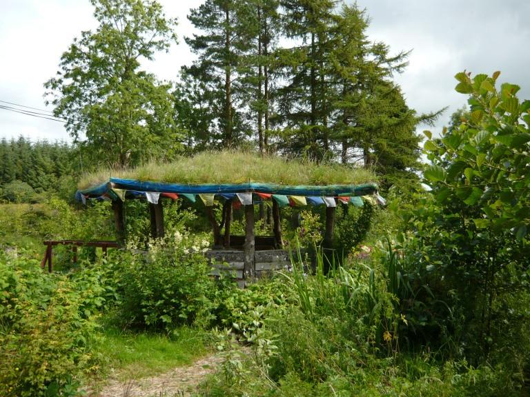 garden july 034
