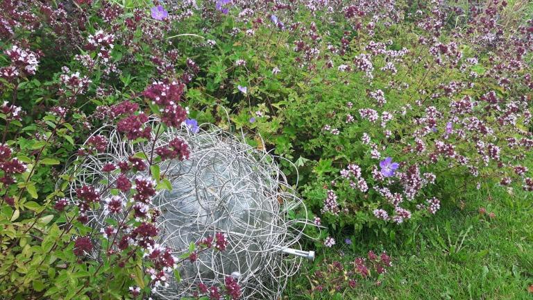 brid garden 095