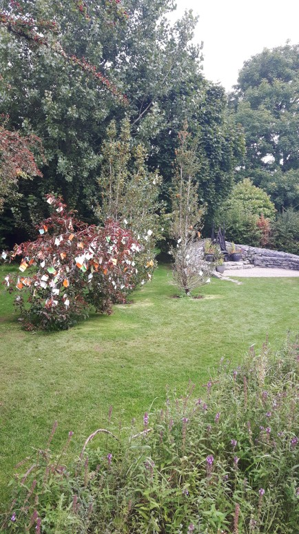 brid garden 111