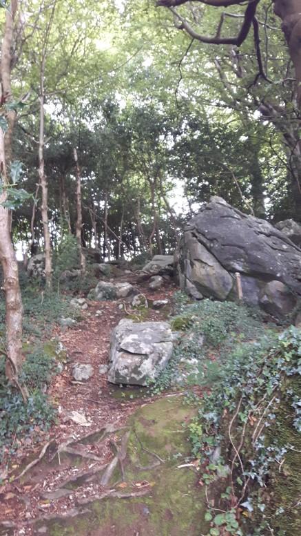 brid garden 209