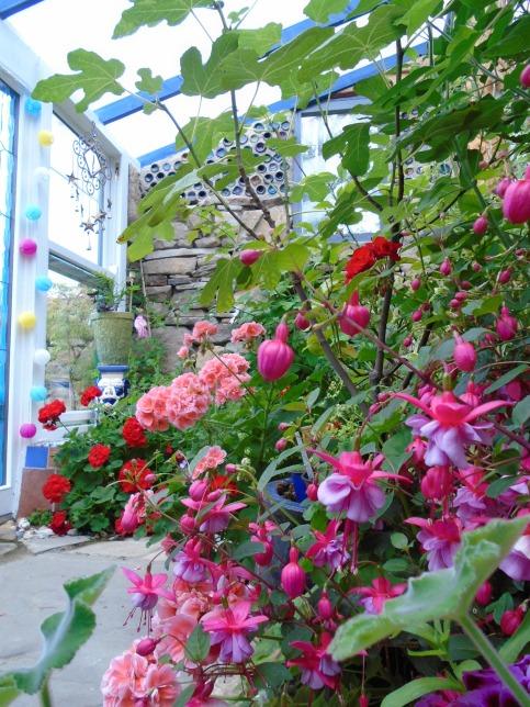sweden and garden 201