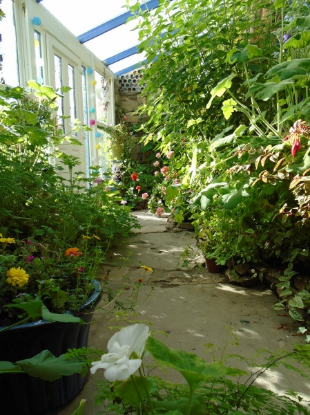 conservatory and acers 040