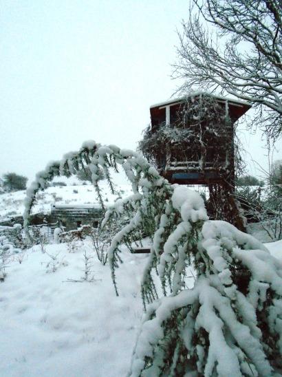 snow 071
