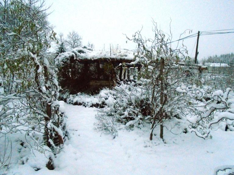 snow 103