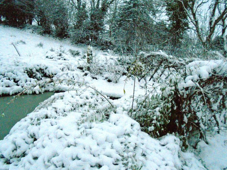 snow 114