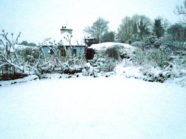 snow 028