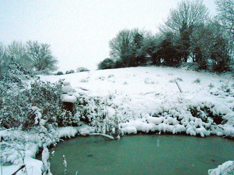 snow 124