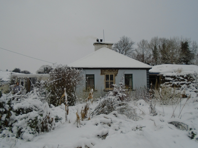 snow 2 037