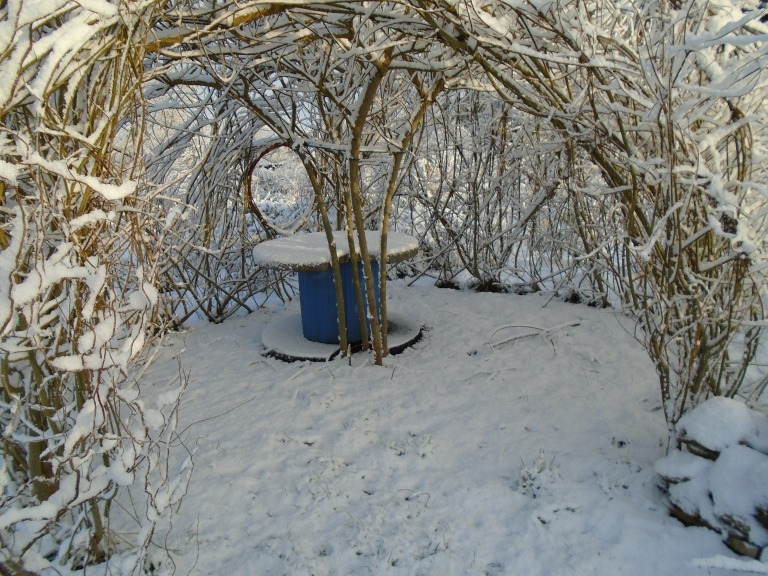 February snow 052