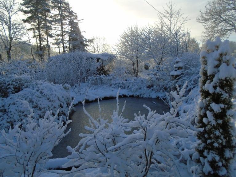 February snow 148