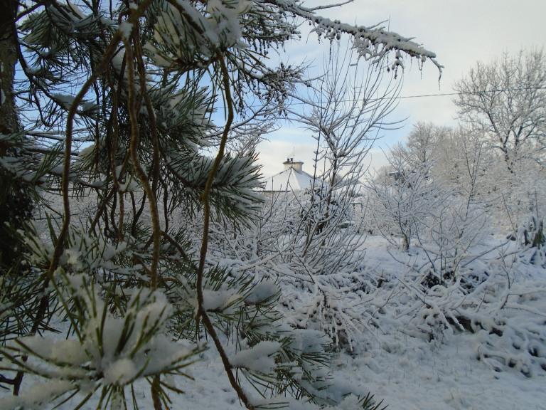 February snow 192