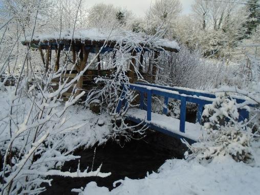 February snow 225