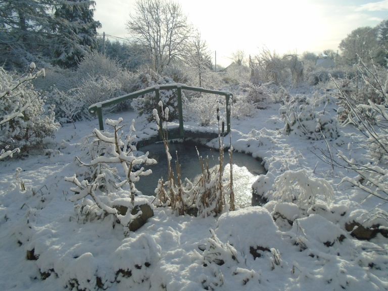 February snow 277