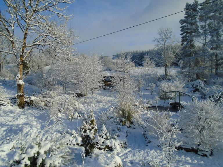 February snow 304