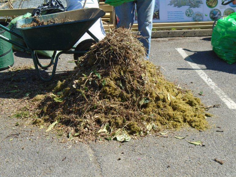 compost 053