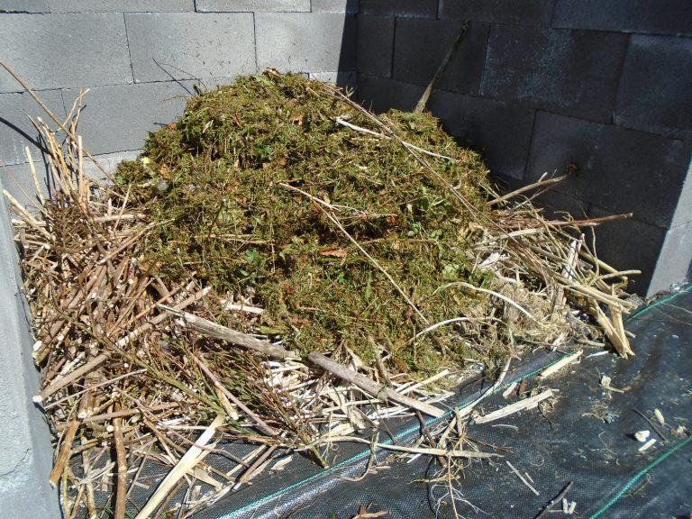 compost 069