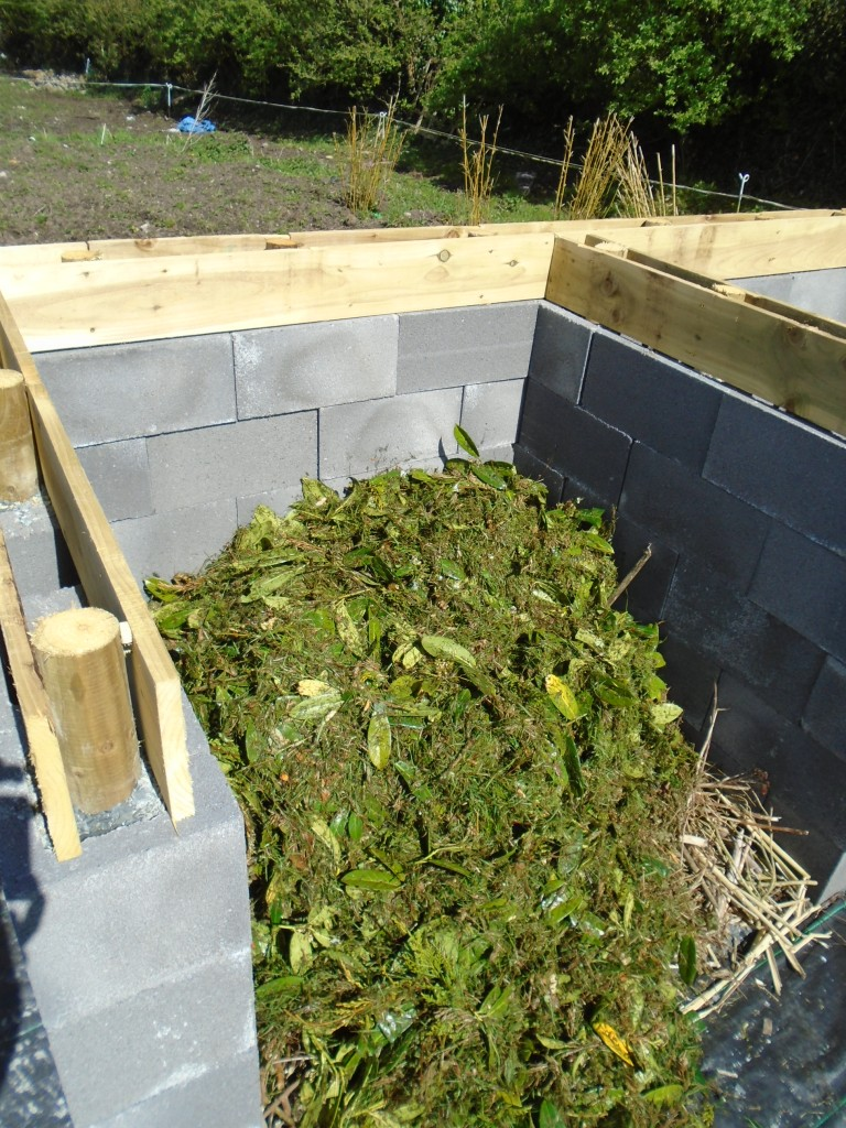 compost 085