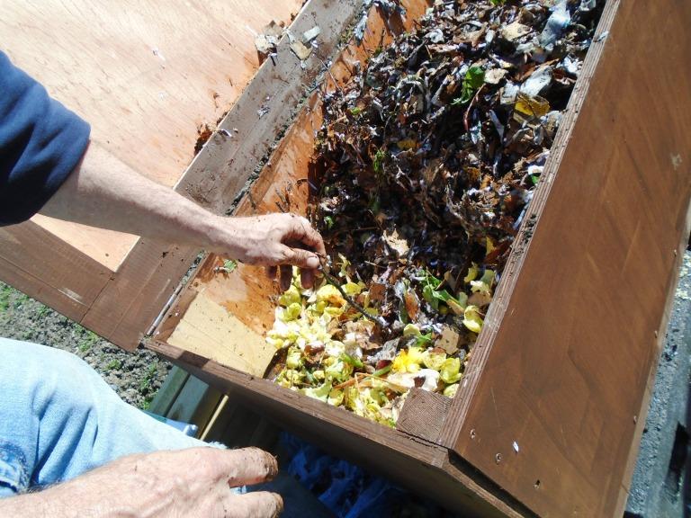 compost 111
