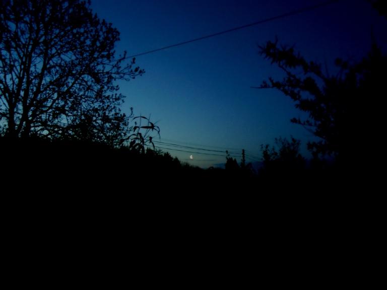 dawn 041