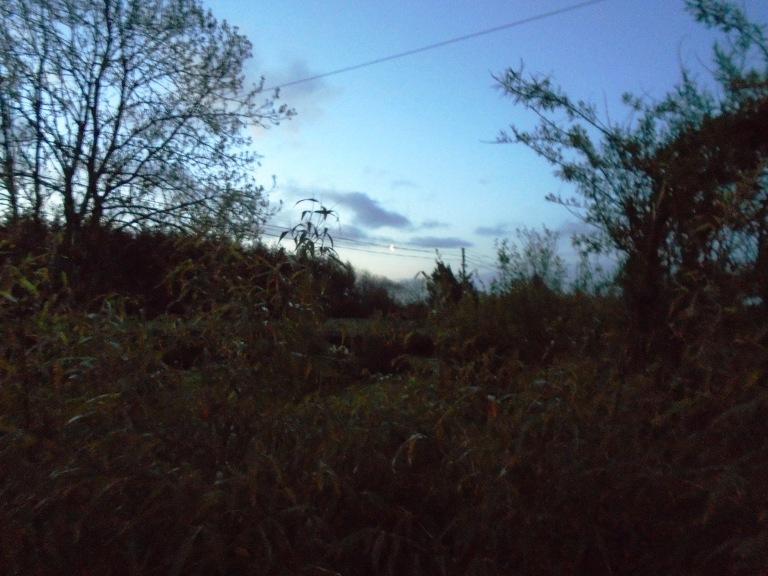 dawn 048