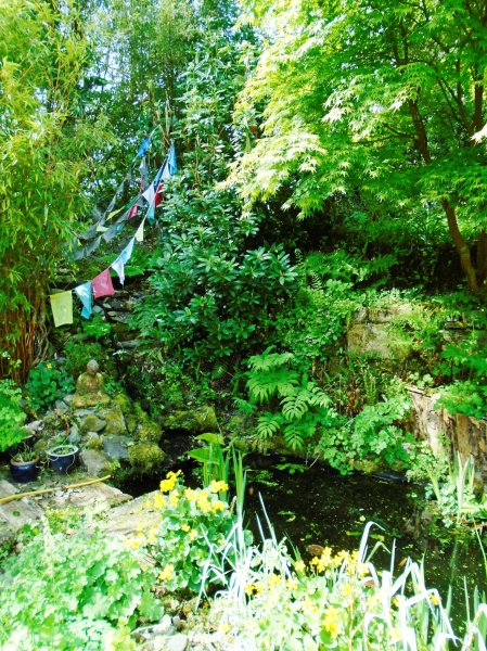 Rose garden 073