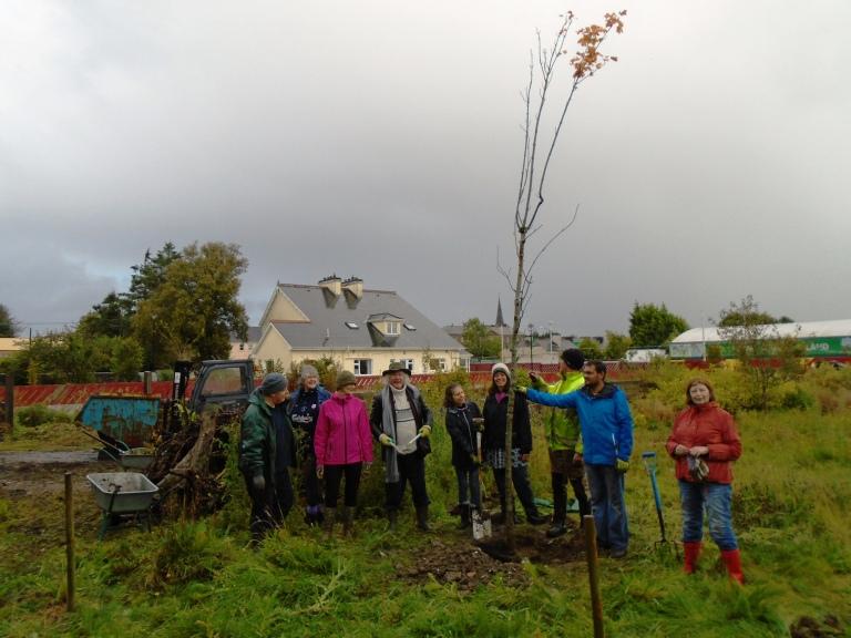 community garden 2 030